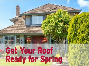 get your roof ready for spring