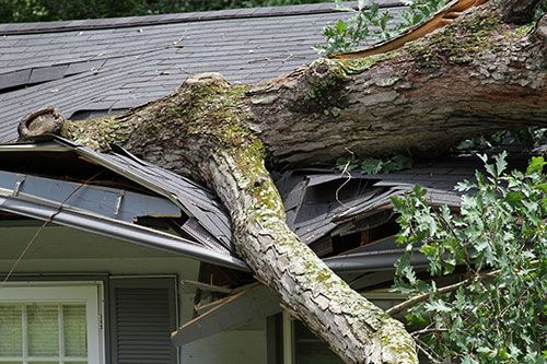 Advice On Filing An Insurance Claim For Damaged Roofs